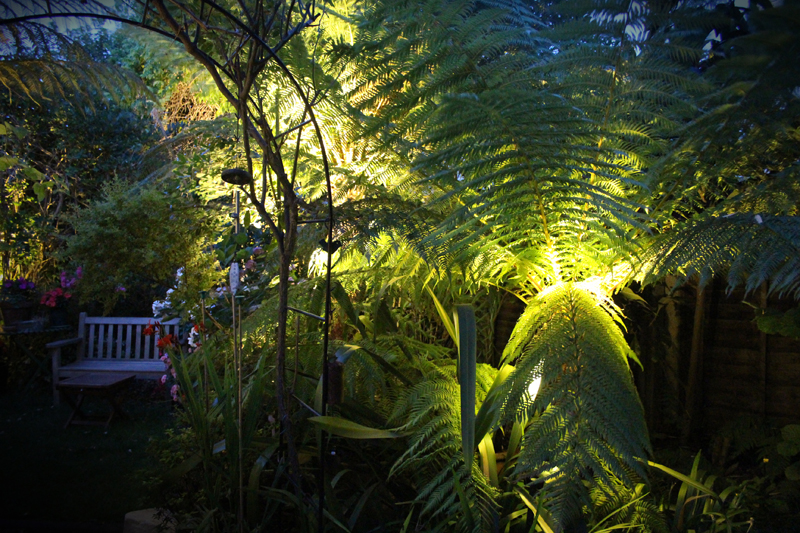 twickenham tropical garden lighting